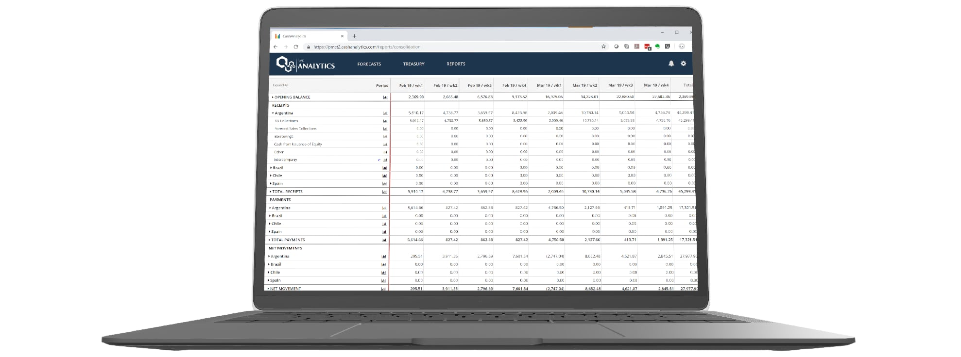 Cash Management - Liquidity Screenshot